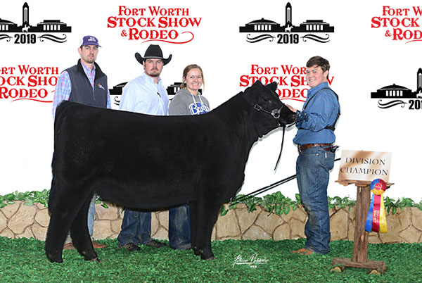 Sucess - Fitz Genetics - Club Calves in Perry, Oklahoma